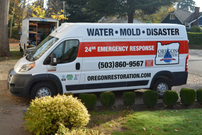 mold and water reconstruction company